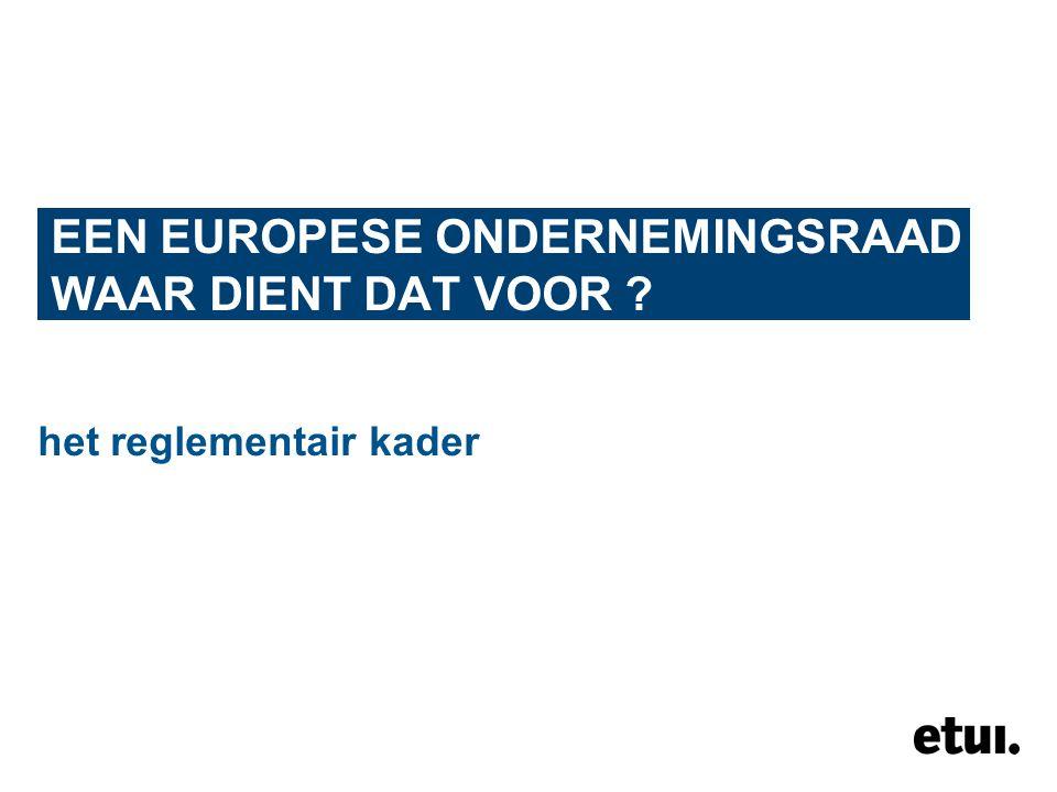 EEN EUROPESE ONDERNEMINGSRAAD WAAR DIENT DAT VOOR