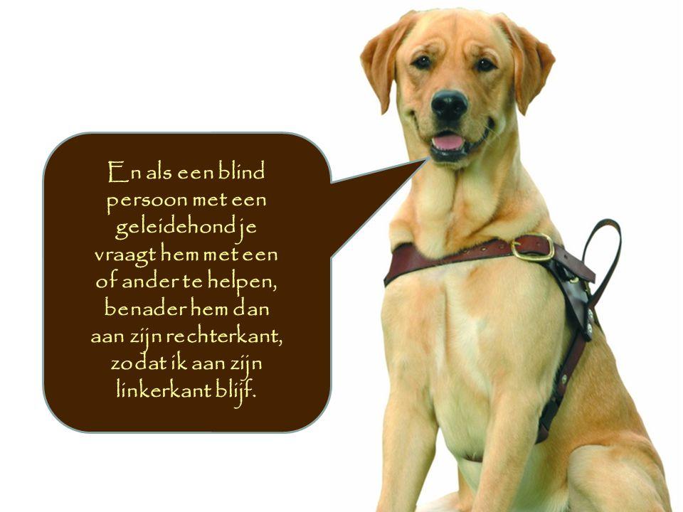 En als een blind persoon met een geleidehond je vraagt hem met een of ander te helpen, benader hem dan aan zijn rechterkant, zodat ik aan zijn linkerkant blijf.