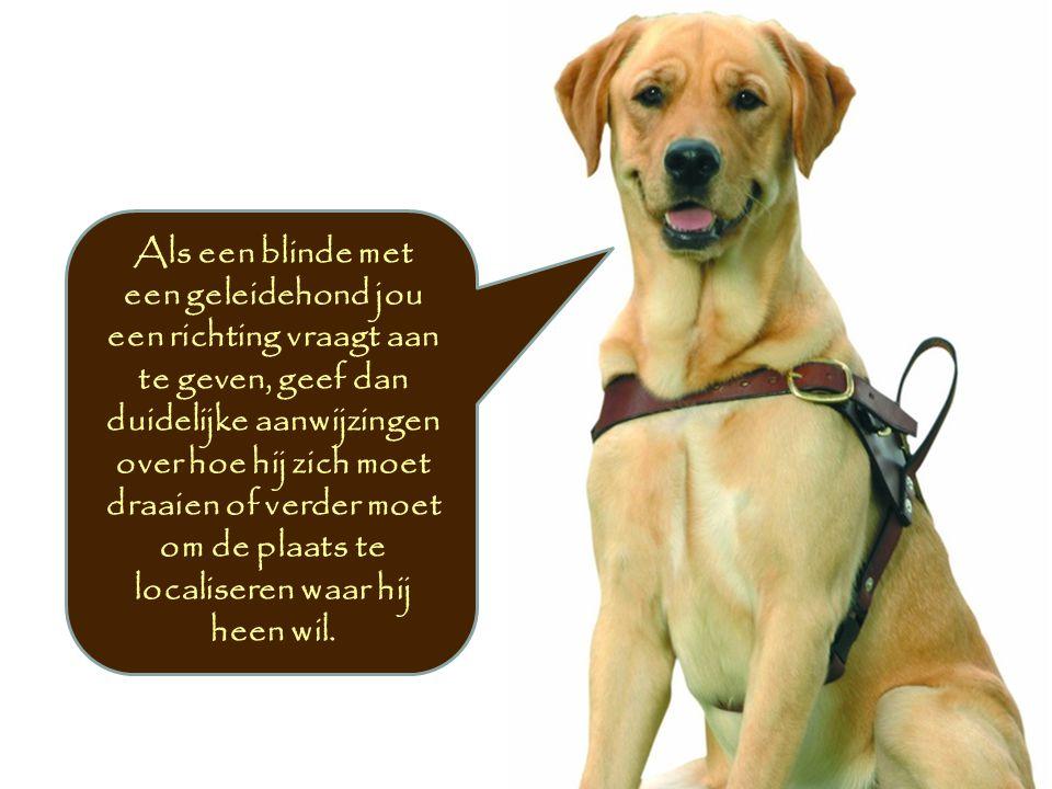 Als een blinde met een geleidehond jou een richting vraagt aan te geven, geef dan duidelijke aanwijzingen over hoe hij zich moet draaien of verder moet om de plaats te localiseren waar hij heen wil.