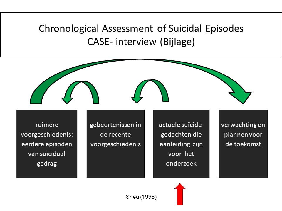 Chronological Assessment of Suicidal Episodes
