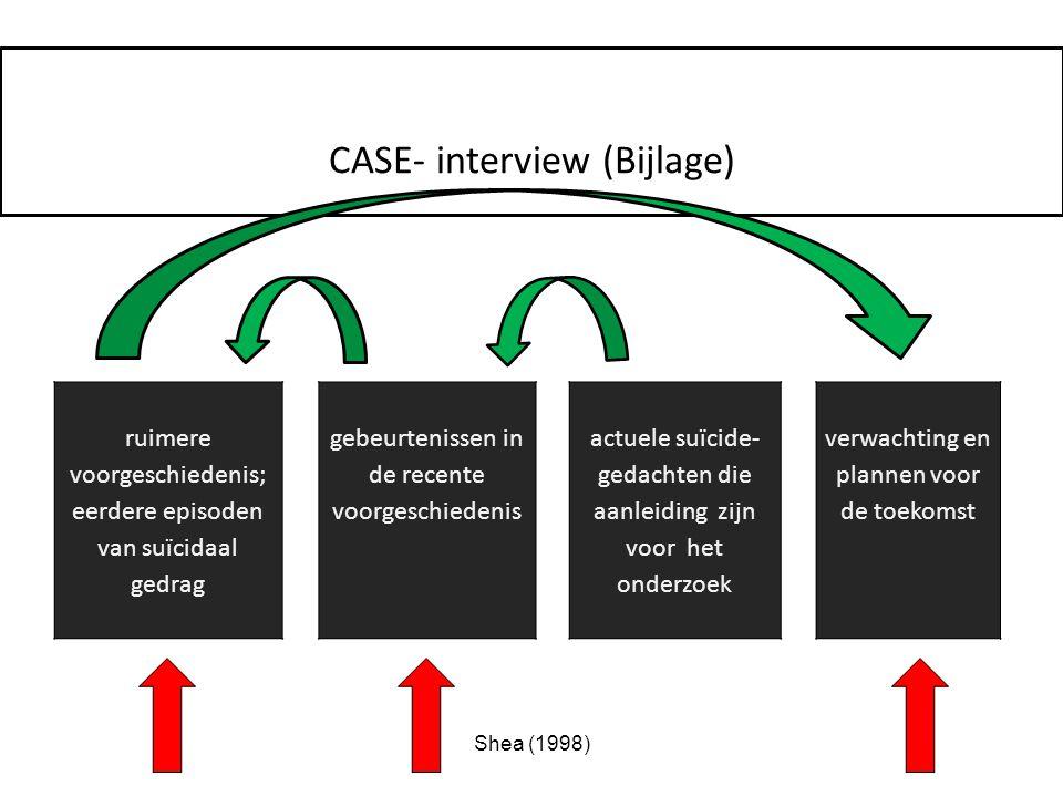 CASE- interview (Bijlage)