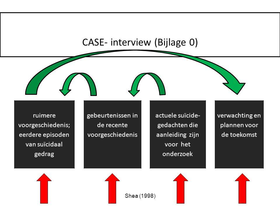 CASE- interview (Bijlage 0)