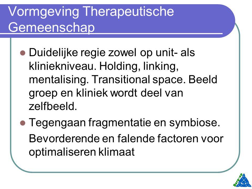 Vormgeving Therapeutische Gemeenschap