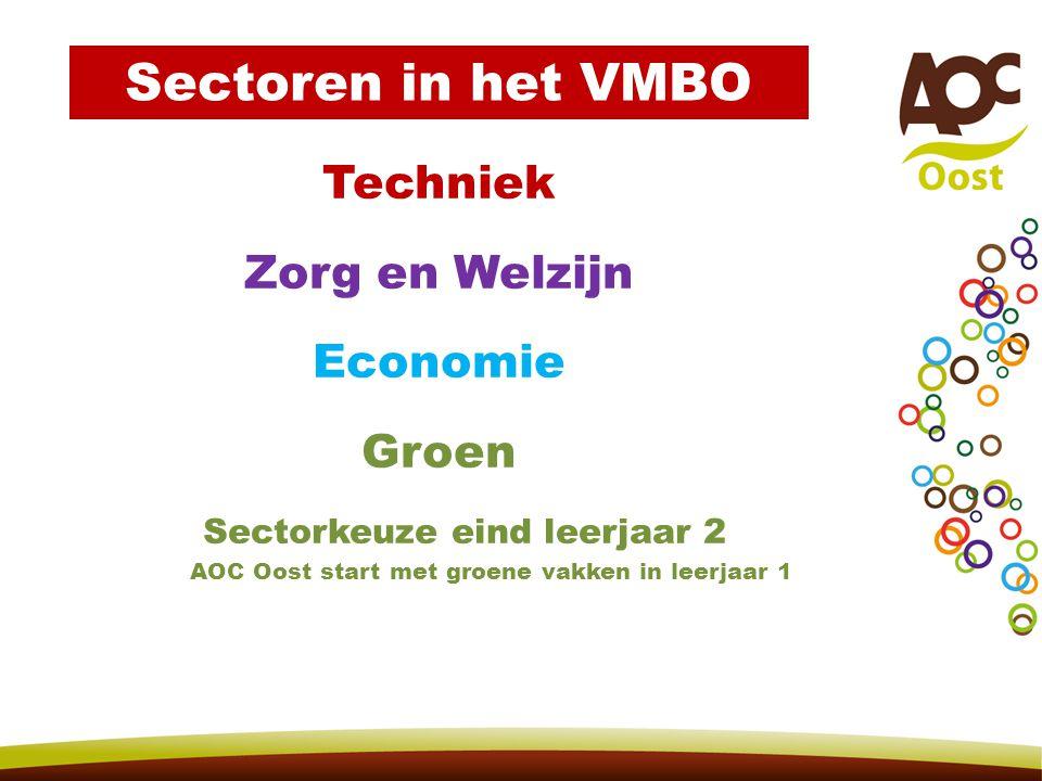 Sectoren in het VMBO Techniek Zorg en Welzijn Economie Groen