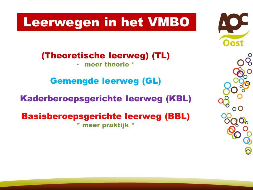 Leerwegen in het VMBO (Theoretische leerweg) (TL)