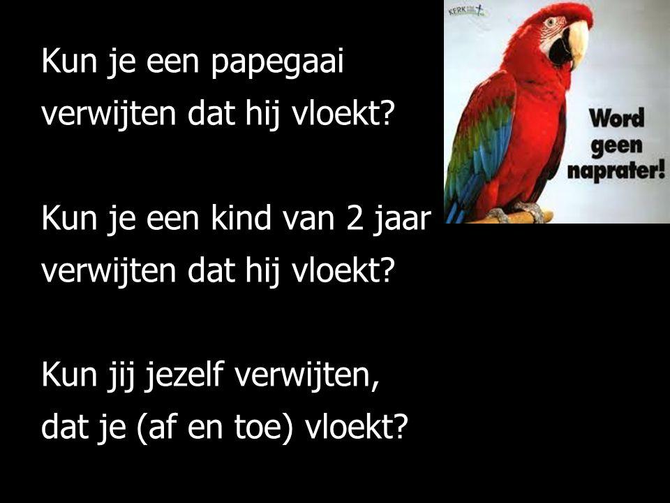 Kun je een papegaai verwijten dat hij vloekt