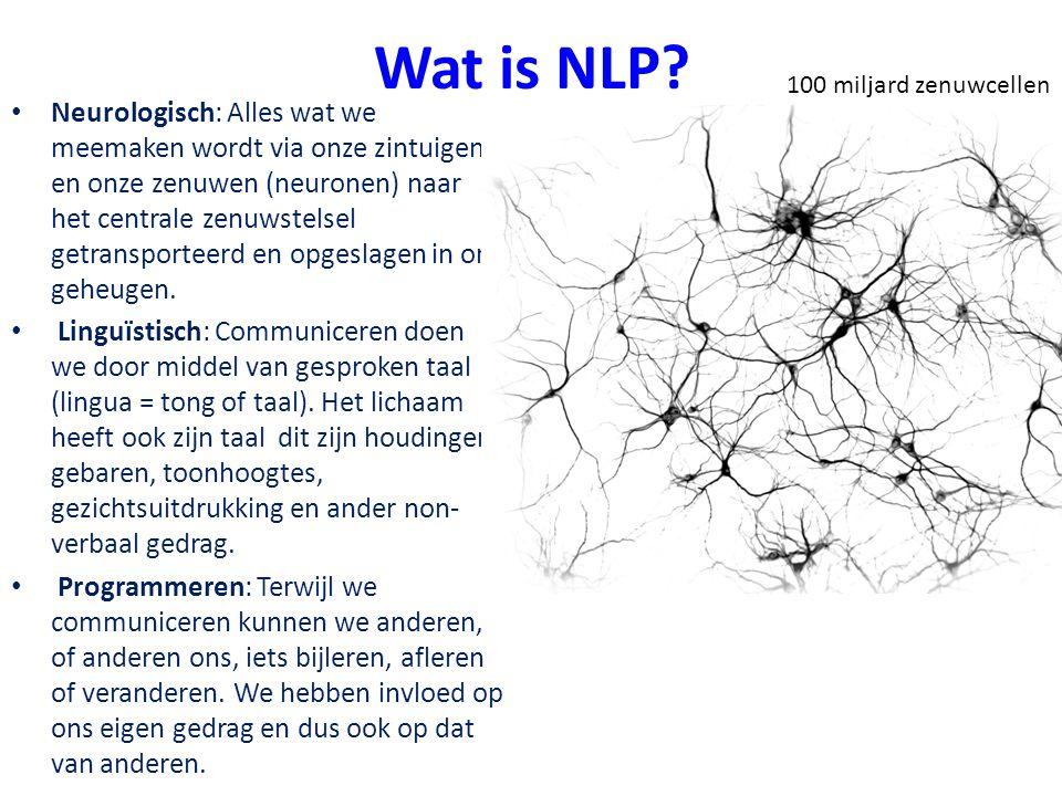 Wat is NLP 100 miljard zenuwcellen.