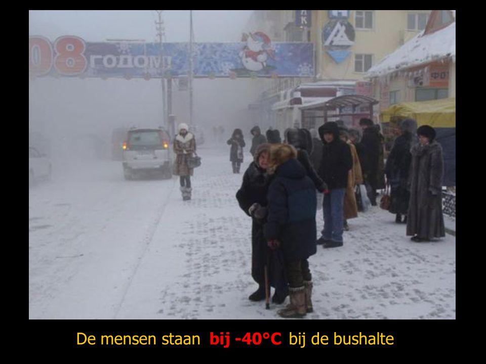 De mensen staan bij -40°C bij de bushalte