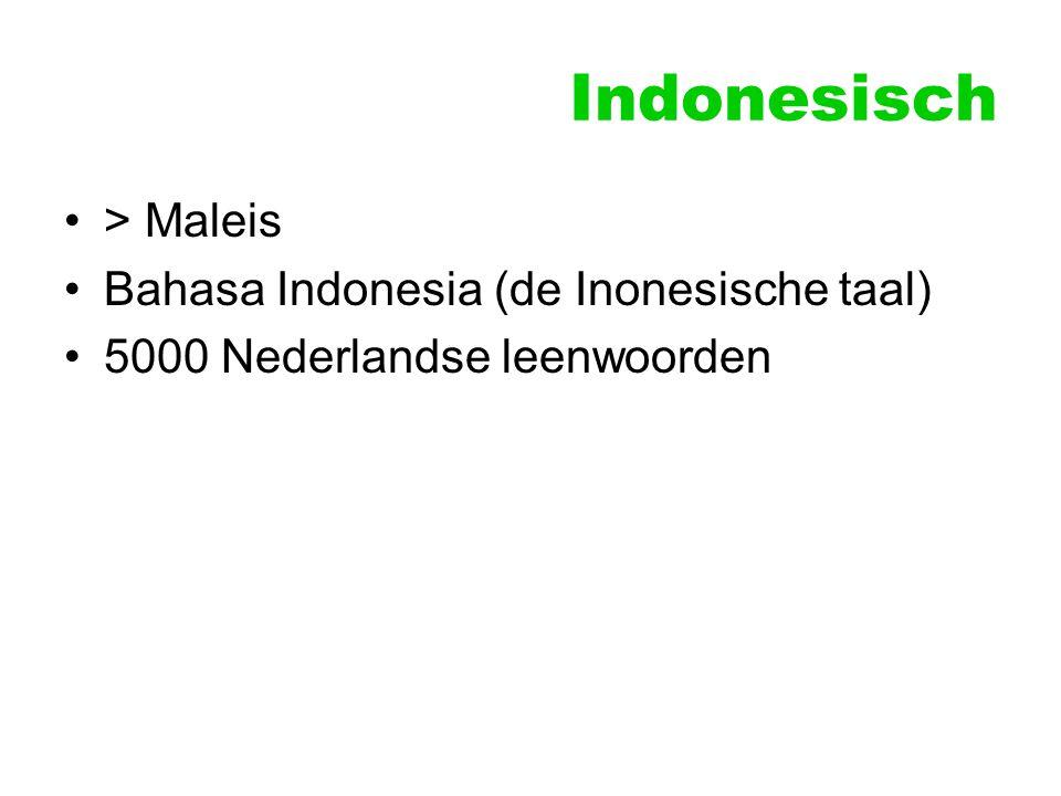 Indonesisch > Maleis Bahasa Indonesia (de Inonesische taal)