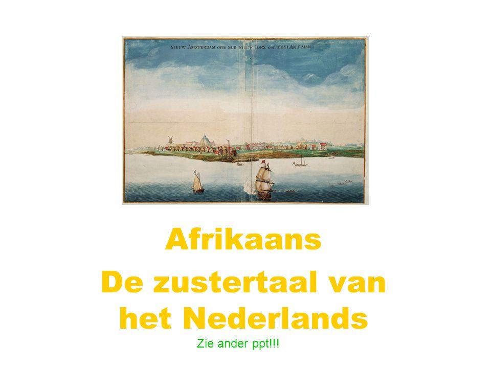 Afrikaans De zustertaal van het Nederlands
