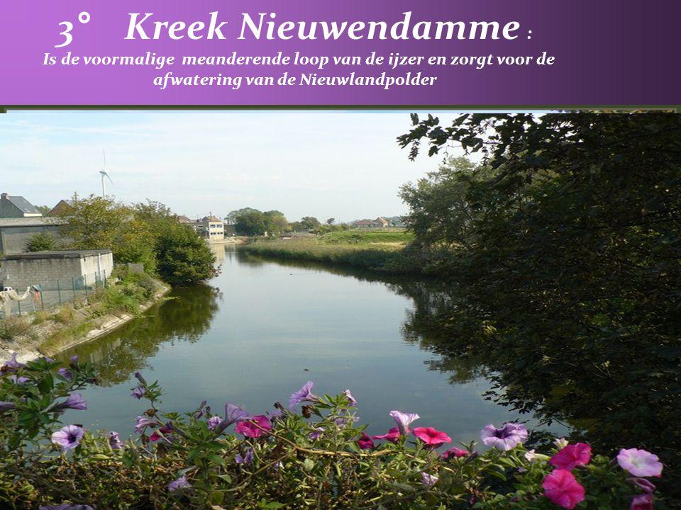 3° Kreek Nieuwendamme : Is de voormalige meanderende loop van de ijzer en zorgt voor de afwatering van de Nieuwlandpolder.