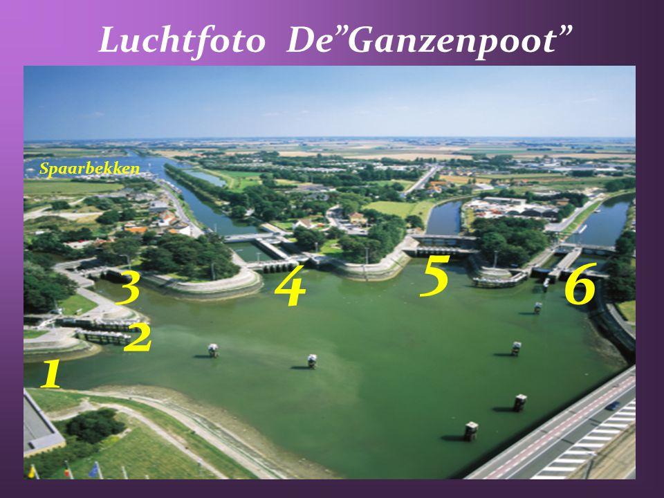 Luchtfoto De Ganzenpoot