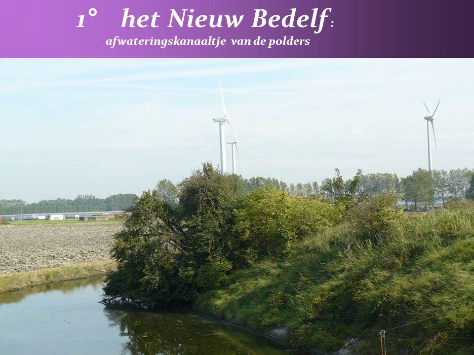 afwateringskanaaltje van de polders