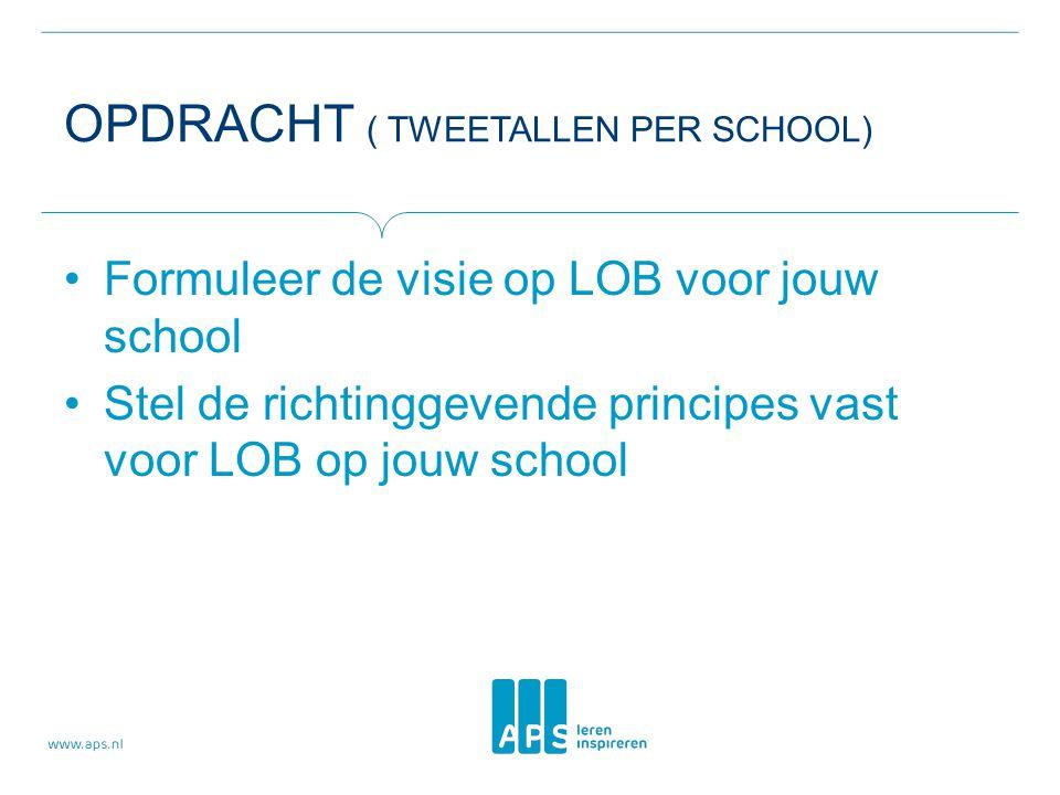 Opdracht ( tweetallen per school)