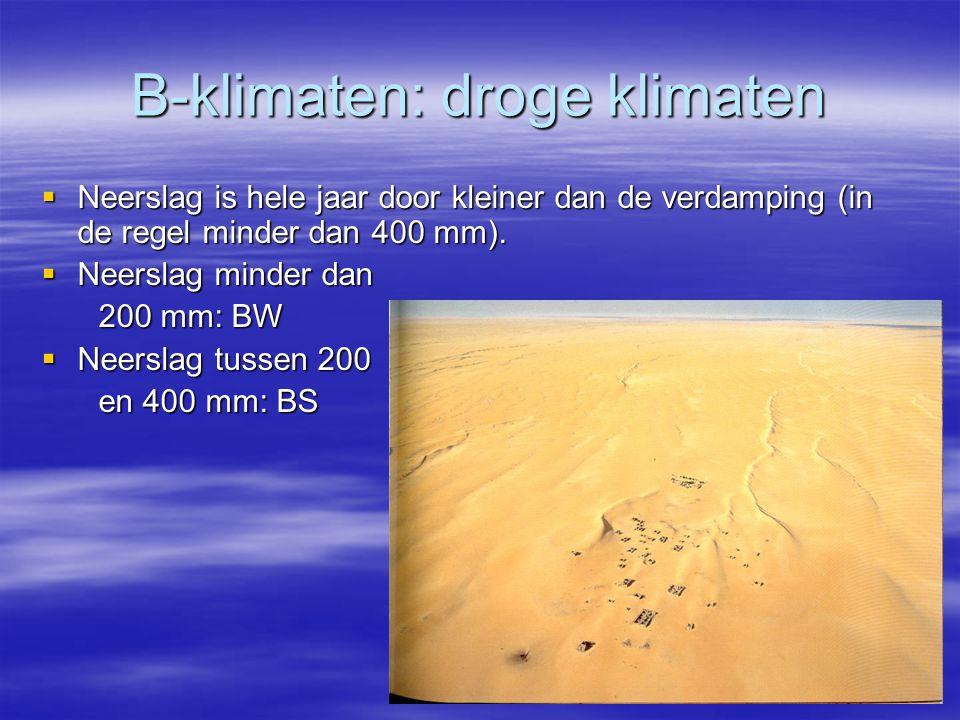 B-klimaten: droge klimaten