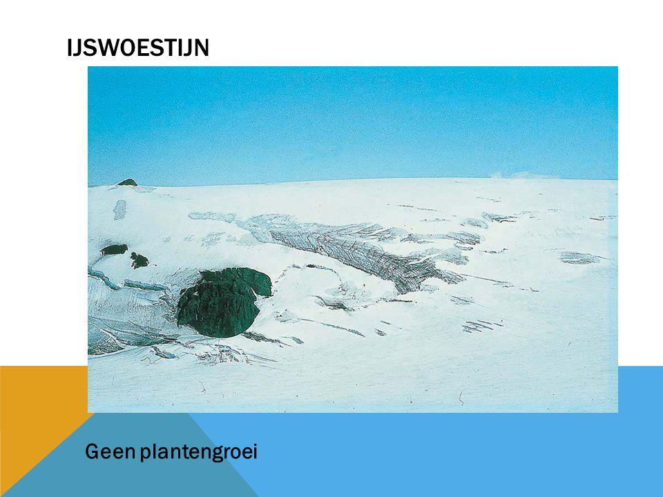ijswoestijn Geen plantengroei