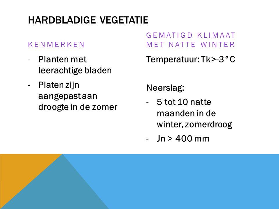 Hardbladige vegetatie