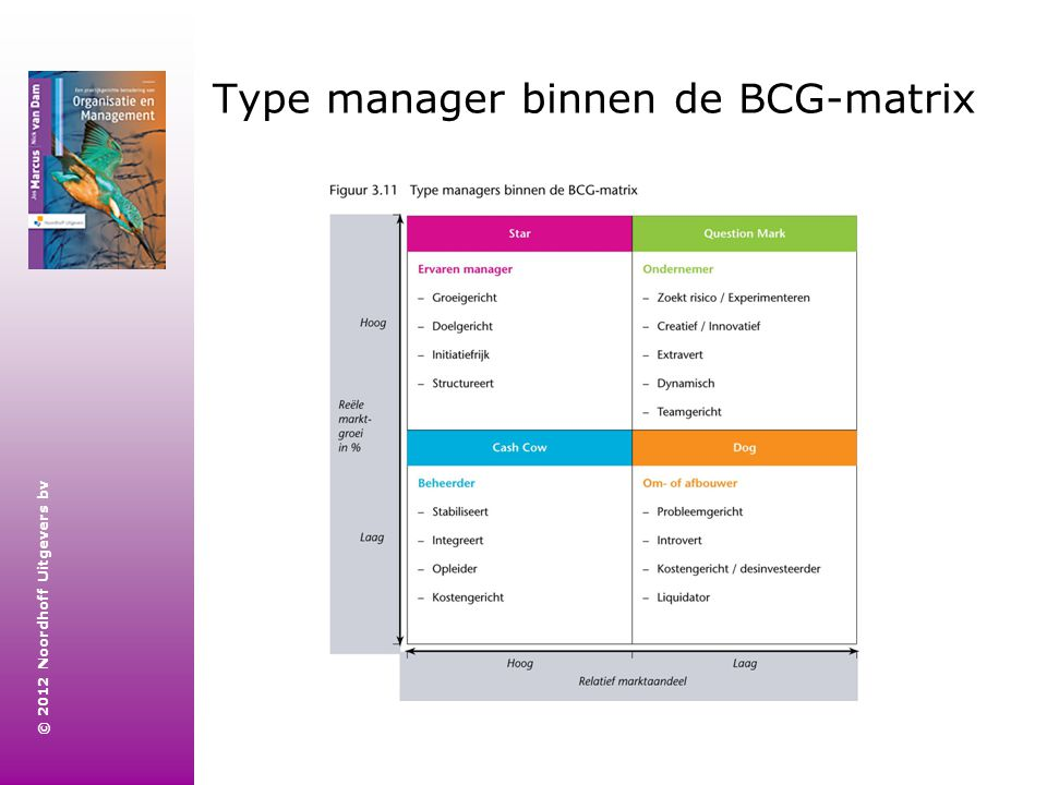 Type manager binnen de BCG-matrix