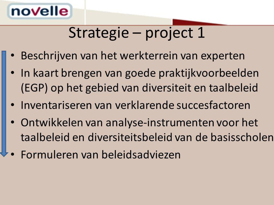 Strategie – project 1 Beschrijven van het werkterrein van experten