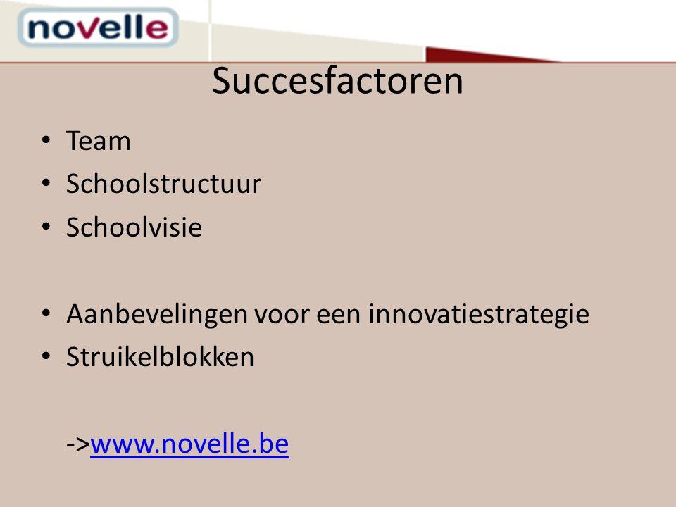 Succesfactoren Team Schoolstructuur Schoolvisie
