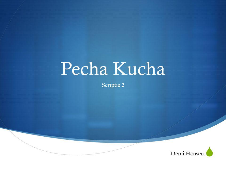 Pecha Kucha Scriptie 2 Demi Hansen