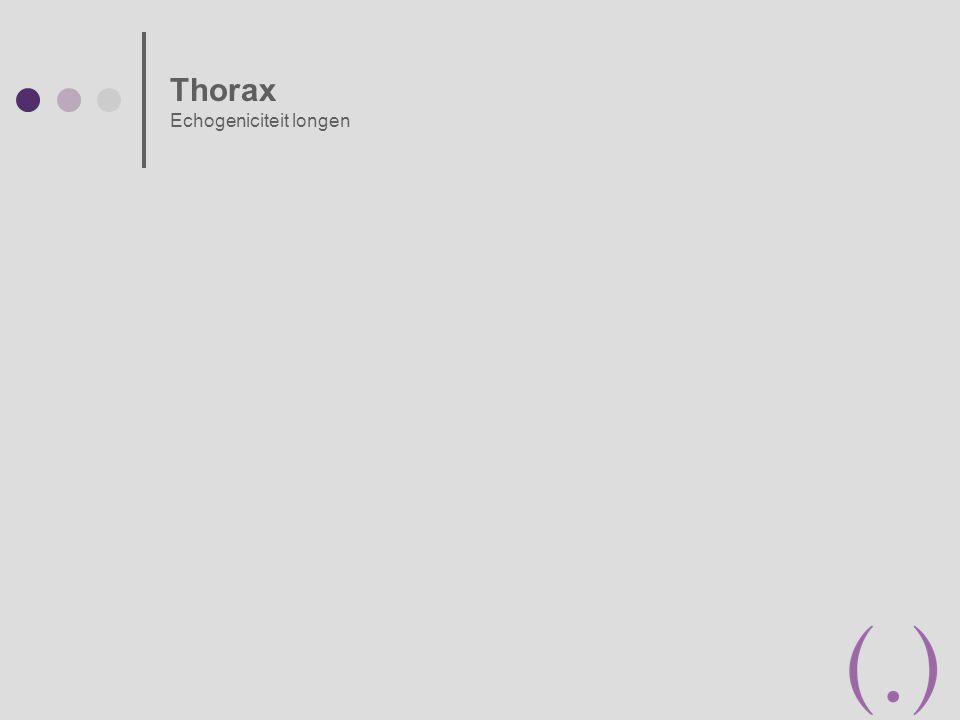Thorax Echogeniciteit longen