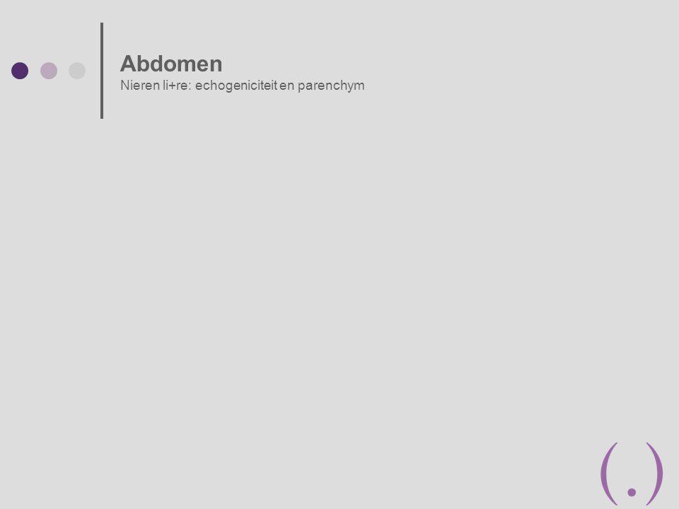 Abdomen Nieren li+re: echogeniciteit en parenchym