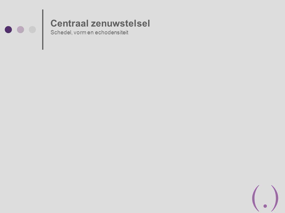 Centraal zenuwstelsel Schedel, vorm en echodensiteit
