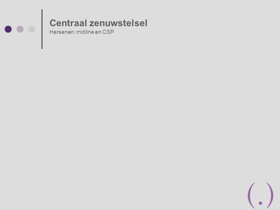 Centraal zenuwstelsel Hersenen: midline en CSP