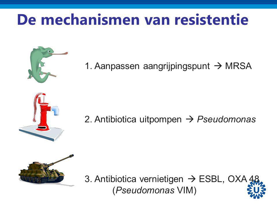 De mechanismen van resistentie