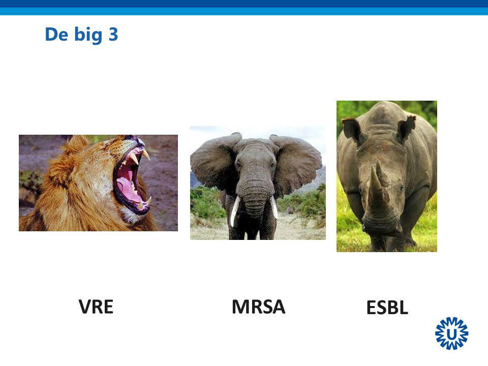 De big 3 VRE MRSA ESBL