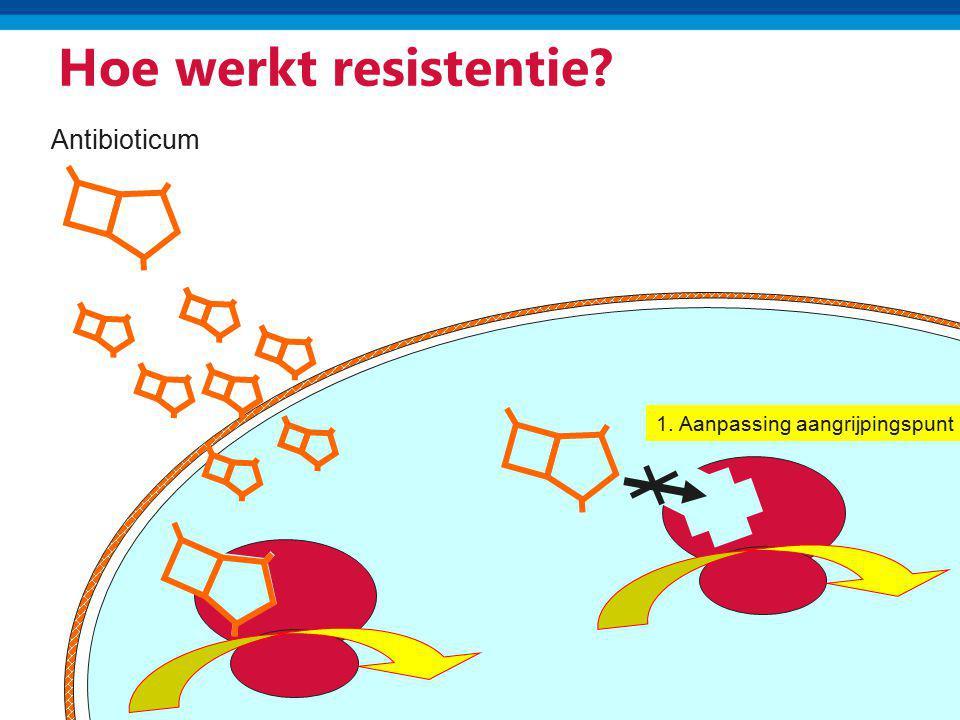 Hoe werkt resistentie Antibioticum 1. Aanpassing aangrijpingspunt