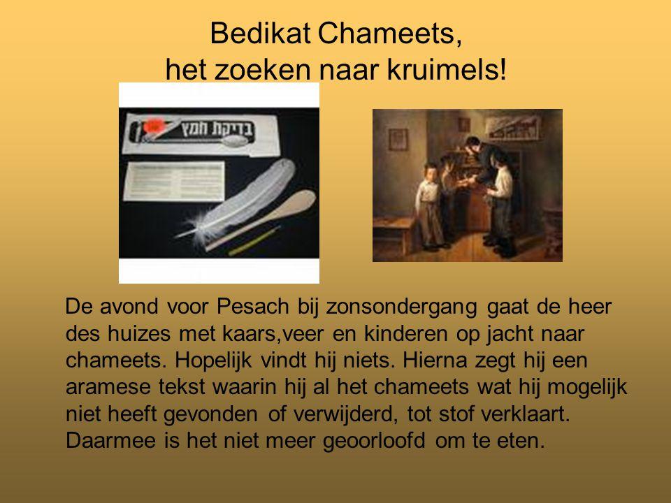 Bedikat Chameets, het zoeken naar kruimels!