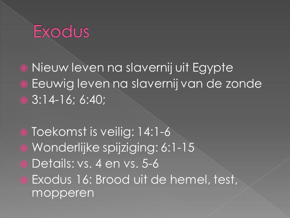 Exodus Nieuw leven na slavernij uit Egypte