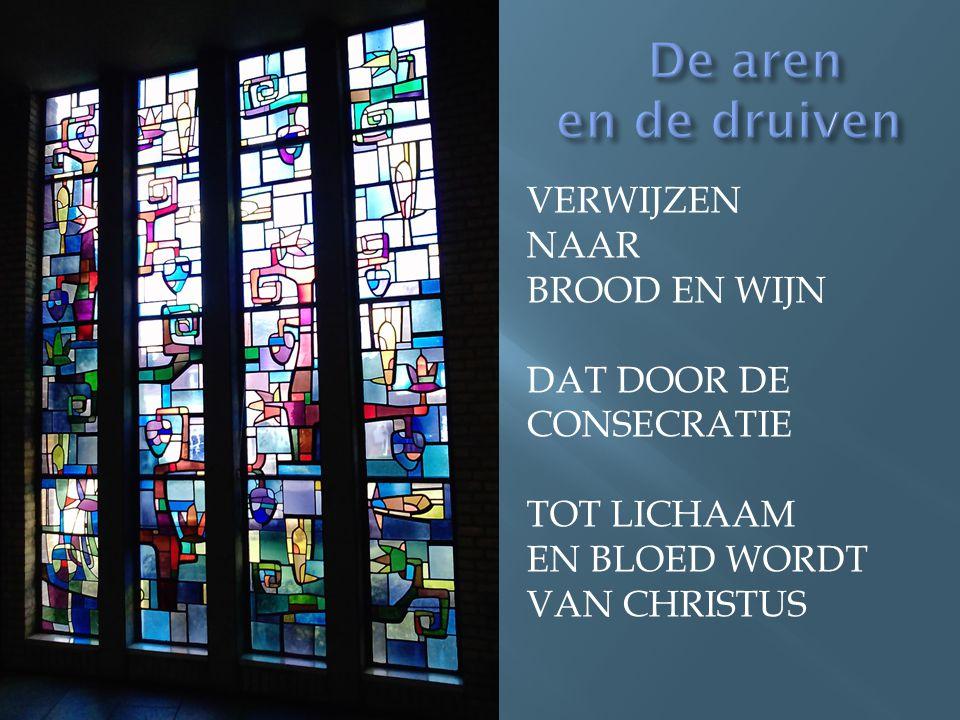 De aren en de druiven VERWIjzen NAAR Brood en wijn dat door de consecratie tot lichaam En bloed wordt van Christus.