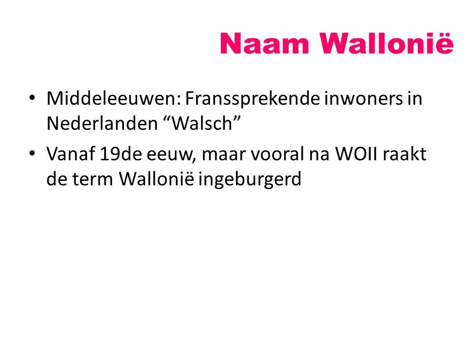 Naam Wallonië Middeleeuwen: Franssprekende inwoners in Nederlanden Walsch Vanaf 19de eeuw, maar vooral na WOII raakt de term Wallonië ingeburgerd.