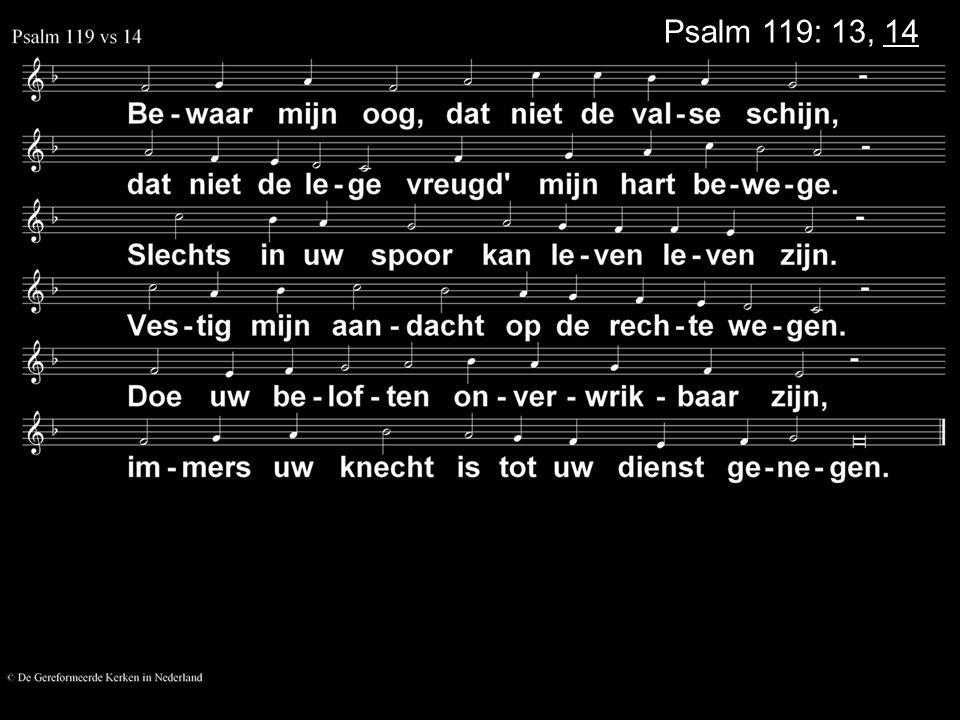 Psalm 119: 13, 14