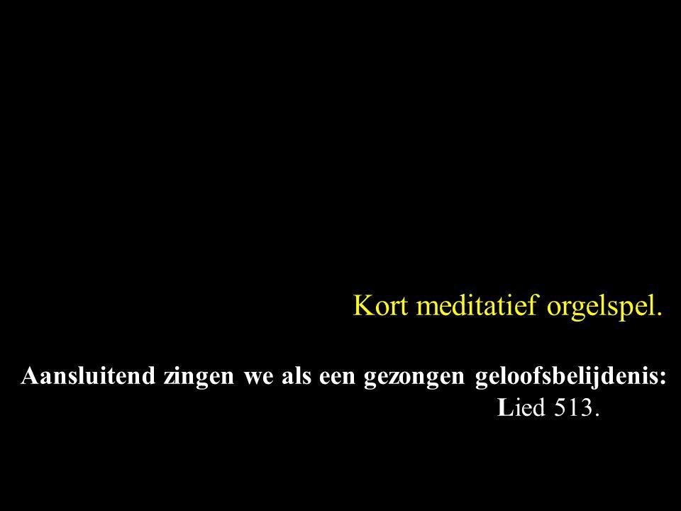 Kort meditatief orgelspel.