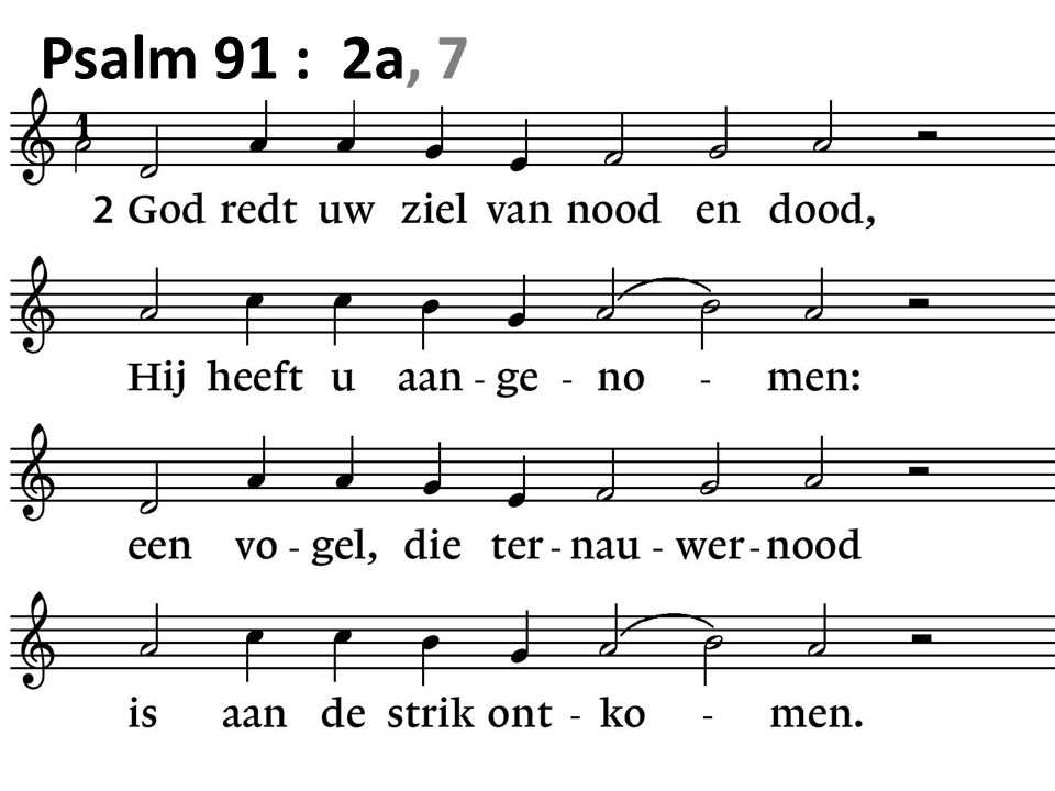 Psalm 91 : 2a, 7