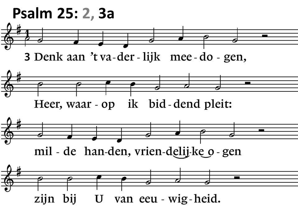 Psalm 25: 2, 3a