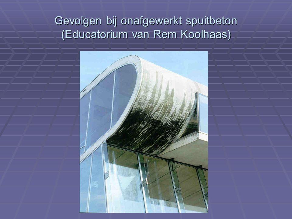 Gevolgen bij onafgewerkt spuitbeton (Educatorium van Rem Koolhaas)