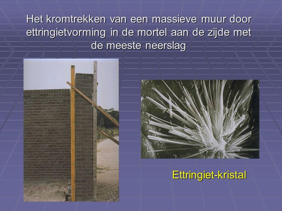 Het kromtrekken van een massieve muur door ettringietvorming in de mortel aan de zijde met de meeste neerslag