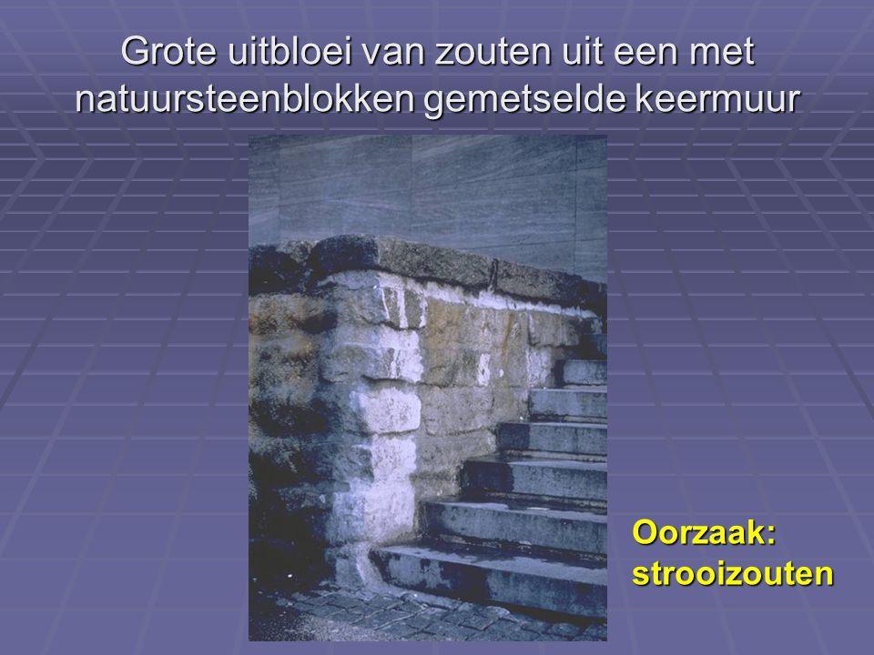 Grote uitbloei van zouten uit een met natuursteenblokken gemetselde keermuur