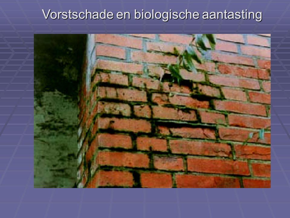 Vorstschade en biologische aantasting