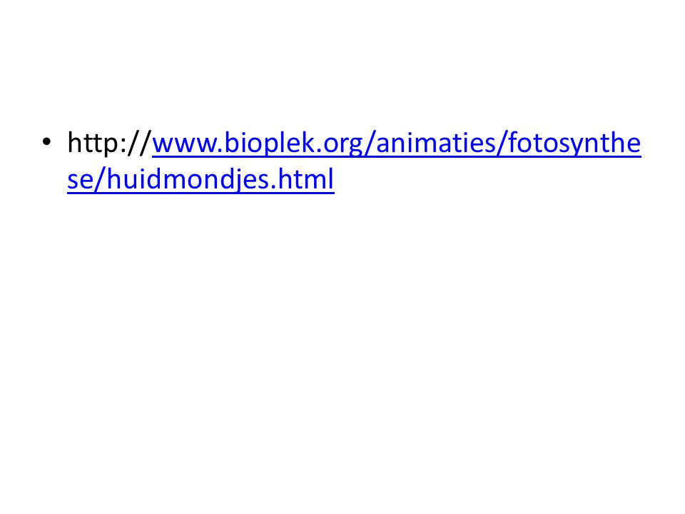 http://www.bioplek.org/animaties/fotosynthese/huidmondjes.html
