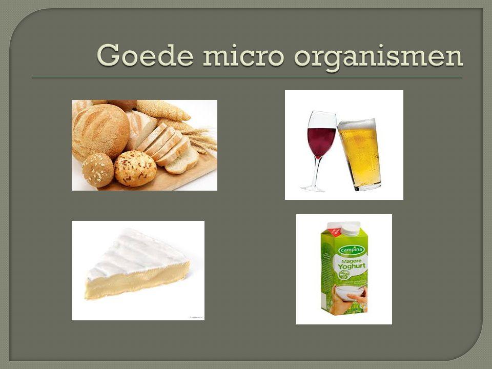 Goede micro organismen