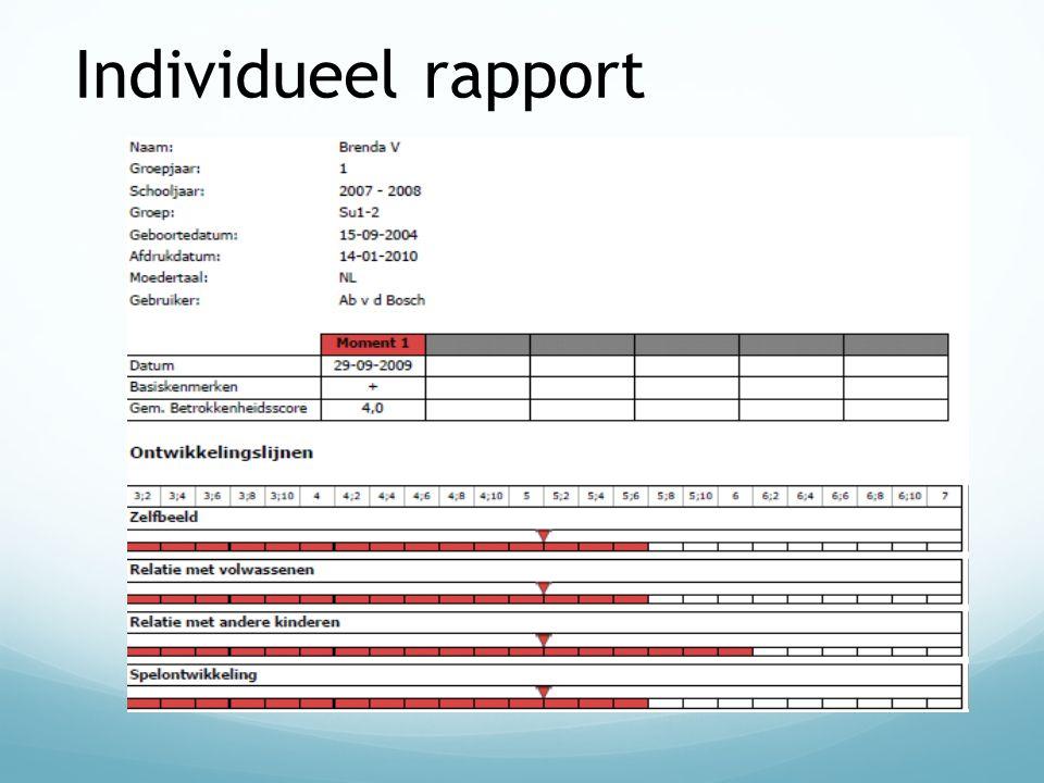 Individueel rapport