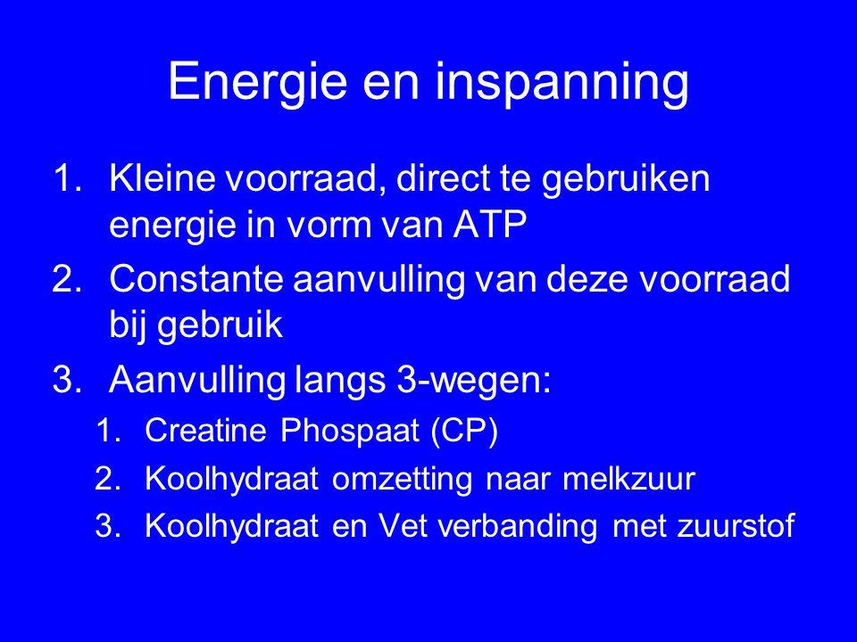 Energie en inspanning Kleine voorraad, direct te gebruiken energie in vorm van ATP. Constante aanvulling van deze voorraad bij gebruik.