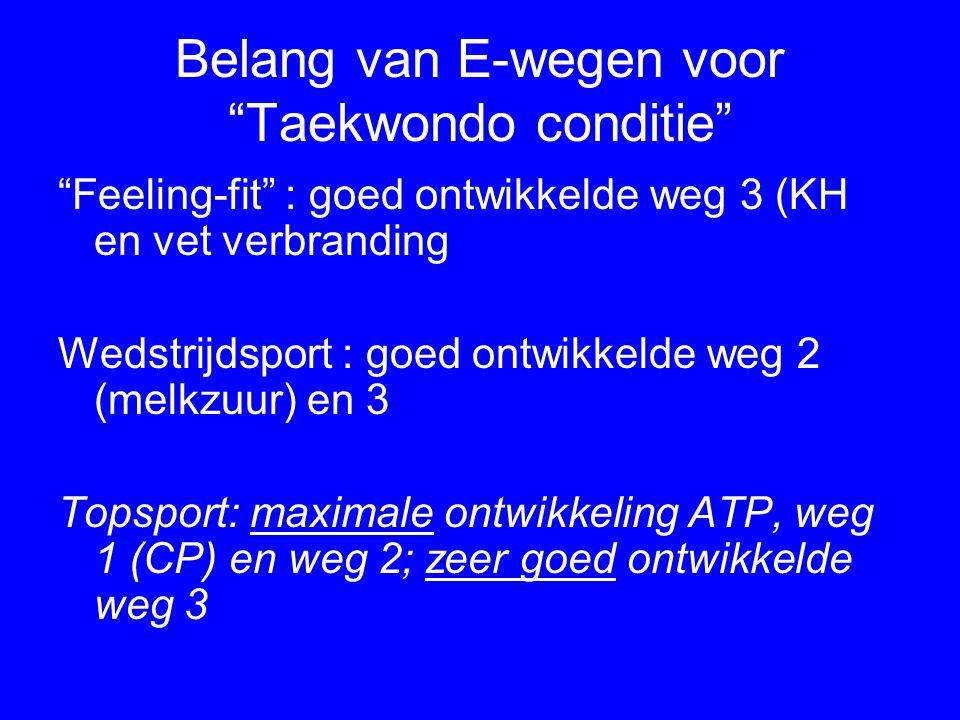 Belang van E-wegen voor Taekwondo conditie