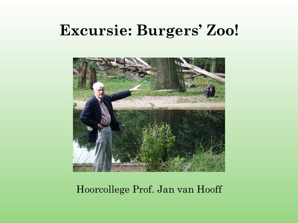 Excursie: Burgers' Zoo!
